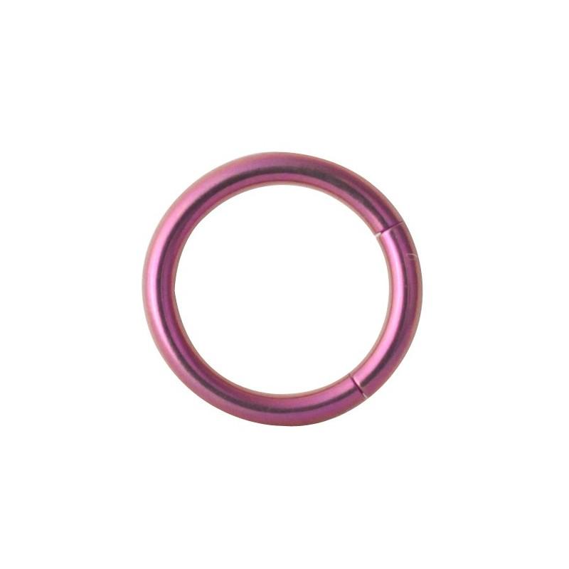 Tt-pu Smooth Segment Rings